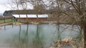 Pêche à la truite - Alliance Française de Lucerne