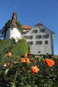 Alliance Française de Lucerne visite du château de Heidegg