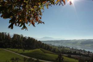 Alliance Française de Lucerne visite du château de Heidegg vue sur le Seetal