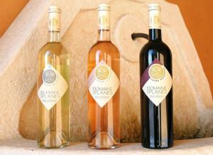 Soirée dégustation de vins Alliance Française de Lucerne