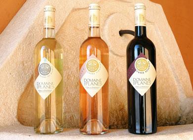 Voyage des sens autour de Côtes de Provence